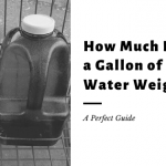 How Much Does a Gallon of Water Weigh