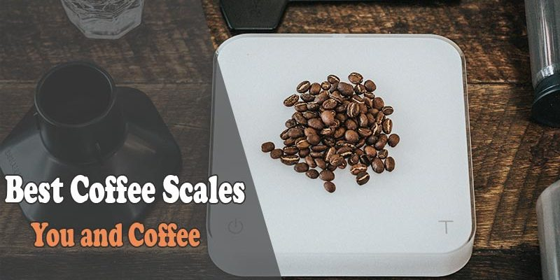 Best Coffee Scales Reviews in 2019