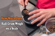 How Much Does a Half Gram Weigh on a Scale?